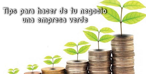 negocio-verde